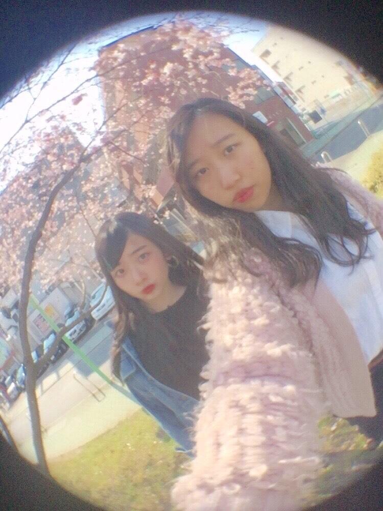 Spring vacation 🌸 | みづき